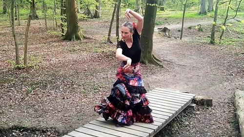 Flamenco intro-workshop